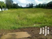 1/2 Acre Land For Sale At Kabati Zabka In Murang'a County. | Land & Plots For Sale for sale in Murang'a, Kagundu-Ini
