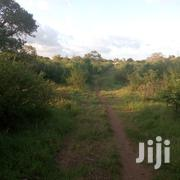 Land on Sale at Kanamai | Land & Plots For Sale for sale in Mombasa, Majengo