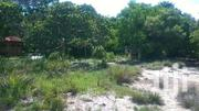 Beautiful Beach Front Land South Coast Funzi Mainland Area 1.75 Acres | Land & Plots For Sale for sale in Kwale, Ramisi