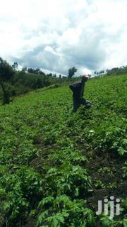 Nyandarua County, Kipipiri On Aberdare Location 23acs Agricultural Lan | Land & Plots For Sale for sale in Nyandarua, Kipipiri