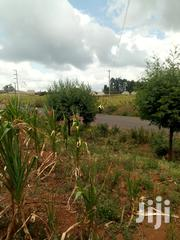 1.75 Acre Land for Sale in Limuru Ndeiya Touching Tarmac | Land & Plots For Sale for sale in Kiambu, Ndeiya