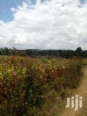 1acres in Ndeiya Loyal Second Row From Tarmac | Land & Plots For Sale for sale in Kiambu, Ndeiya