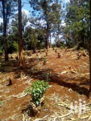 Plot For Sale In Muchatha 100*100 | Land & Plots For Sale for sale in Kiambu, Muchatha