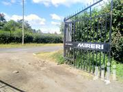 3 Plots 50 by 100 for Sale at Mireri Estates Lanet Nakuru   Land & Plots For Sale for sale in Nakuru, Nakuru East