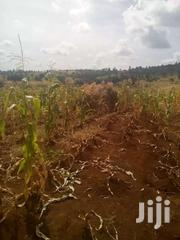 8acres In Loitoktok For Urgent Sale | Land & Plots For Sale for sale in Kajiado, Olkeri
