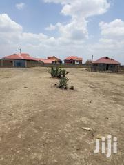 Plot at Juja South Between Kalimoni and Urithi Apartments | Land & Plots For Sale for sale in Kiambu, Juja