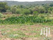2 Acre Parcel Of Land | Land & Plots For Sale for sale in Makueni, Wote