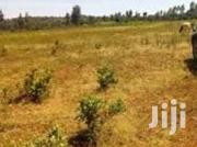 Gatarakwa Plains 12 Acres | Land & Plots For Sale for sale in Nyeri, Gatarakwa