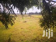 Quarter Acre Ondiri Kikuyu Kiambu For Sale. | Land & Plots For Sale for sale in Kiambu, Kikuyu