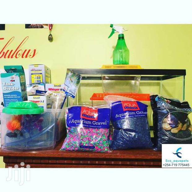 Brand New Aquariums With Its Accessories