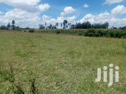 1/8th Acre Vacant Plots for Sale in Ngecha Opposite Gicheha Farm | Land & Plots For Sale for sale in Nakuru, Menengai West