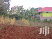 Quarter Acre Plot Kinoo Muthiga Kiambu for Sale. | Land & Plots For Sale for sale in Kiambu, Kinoo