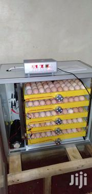 RD 500 Eggs Incubators | Farm Machinery & Equipment for sale in Nairobi, Nairobi Central