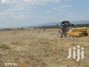 Boma Rhode Grass Seeds | Feeds, Supplements & Seeds for sale in Kiambu, Githunguri