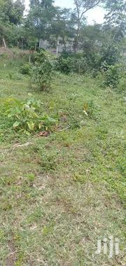 Half Acre Land In Bungoma Mabanga | Land & Plots For Sale for sale in Bungoma, Bukembe West