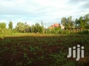 Quarter Acre for Sale in Kabati Mituburi | Land & Plots For Sale for sale in Kiambu, Hospital (Thika)