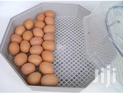 60 Semi Auto Egg Incubator | Farm Machinery & Equipment for sale in Nairobi, Imara Daima