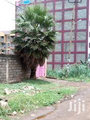 2 Bedroom House For Rent - Mirema Estate Roysambu | Houses & Apartments For Rent for sale in Nairobi, Roysambu