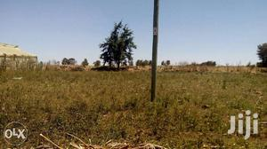 1/4 Quarter Acre Prime Residential Plot in Ngata, Nakuru