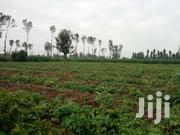 8 Acres At Kigio Gatanga 4 From Blue Post Hotel | Land & Plots For Sale for sale in Kiambu, Hospital (Thika)