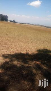 50 Acres Land | Land & Plots For Sale for sale in Nyeri, Mweiga