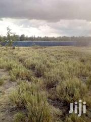 ¼ Acre Plots For Sale At Nanyuki | Land & Plots For Sale for sale in Laikipia, Thingithu