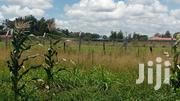 Plots for Sale at Elementaita Jogoo | Land & Plots For Sale for sale in Nakuru, Nakuru East