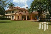 To Let 6bdrm With Dsq Standalone At Lavington Nairobi Kenya | Commercial Property For Rent for sale in Nairobi, Kileleshwa