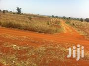 Land For Sale | Land & Plots For Sale for sale in Kiambu, Ting'Ang'A