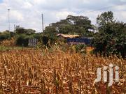 Quarter Acre Gikambura Kikuyu Kiambu for Sale. | Land & Plots For Sale for sale in Kiambu, Kikuyu