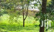 3/4 Acre Red Soil, Thindigua Estate - Kiambu Road | Land & Plots For Sale for sale in Kiambu, Township C
