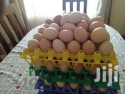 Kienyeji Fertilized Egg | Meals & Drinks for sale in Kiambu, Kikuyu