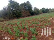 Agricultural Farms | Land & Plots For Sale for sale in Nyandarua, Mirangine