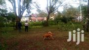 2acre Nairobi Upper Hill Selling At 1.2billion. | Land & Plots For Sale for sale in Nairobi, Kilimani