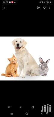 Veterinary Services | Pet Services for sale in Nairobi, Nairobi Central