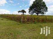 1/4 Acre Vacant Plot for Sale in Kiamunyi Estate, Nakuru | Land & Plots For Sale for sale in Nakuru, Menengai West
