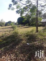 Prime 17 Acres Land At Ksh 770K/Acre On Sale At Ramisi Kwale S/Coast | Land & Plots For Sale for sale in Kwale, Ramisi