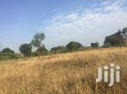 Tittled Plot for Sale in Upcoming Area Along Narok Bomet Road | Land & Plots For Sale for sale in Narok, Narok Town