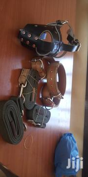 Dog Handling Accessories | Pet's Accessories for sale in Kisumu, Central Kisumu