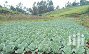 The Owner Has All Legal Documents | Land & Plots For Sale for sale in Kiambu, Kinale