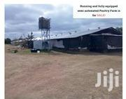 4 Acres Fully Equiped Semi Automated Poultry Farm | Land & Plots For Sale for sale in Machakos, Kithimani