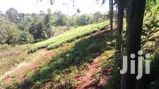 Nyeri Huhoini 4 Acres 9m | Land & Plots For Sale for sale in Nyeri, Kamakwa/Mukaro