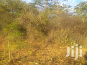 8 Acres At Ikutha  KITUI | Land & Plots For Sale for sale in Kitui, Matinyani