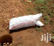Potatoes From Farm. Regular Supply Guaranteed | Feeds, Supplements & Seeds for sale in Nakuru, Molo