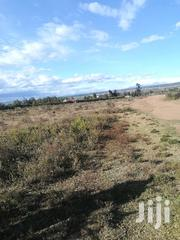One Acre and Quarter Land in Naivasha Near Keroche Brewery. | Land & Plots For Sale for sale in Nakuru, Naivasha East