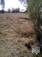 140 Acres For Sale | Land & Plots For Sale for sale in Laikipia, Nanyuki