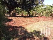 100*100 Plot In Muranga County Sh 150,000 | Land & Plots For Sale for sale in Murang'a, Mbiri