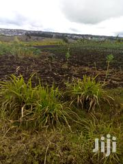 100/100 Plot On Sale At Flyover Kinangop Only 500mtrs From Road | Land & Plots For Sale for sale in Nyandarua, Magumu