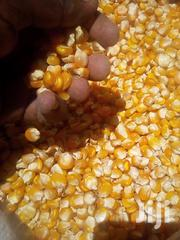 Yellow Corns Seed For Silage | Feeds, Supplements & Seeds for sale in Nakuru, Nakuru East