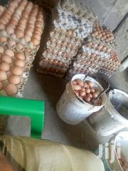 Layers Eggs | Livestock & Poultry for sale in Kiambu, Juja